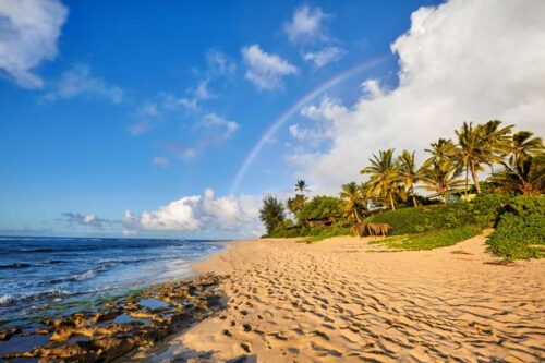 Guided Tours to Hawaii Now the Cost-Effective Way To Go